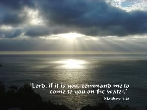 Matthew14_28